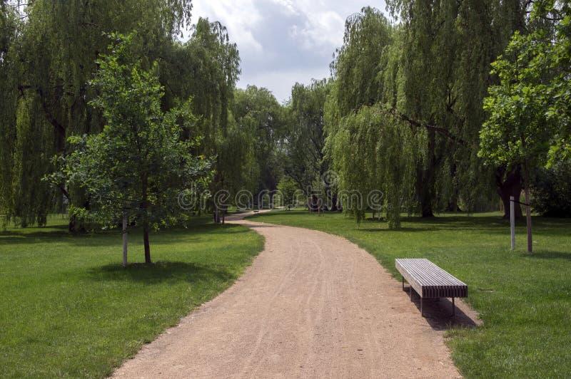 Parque público nas horas de verão, nas hortaliças, no lance do trajeto e no banco, céu ensolarado, azul fotografia de stock royalty free