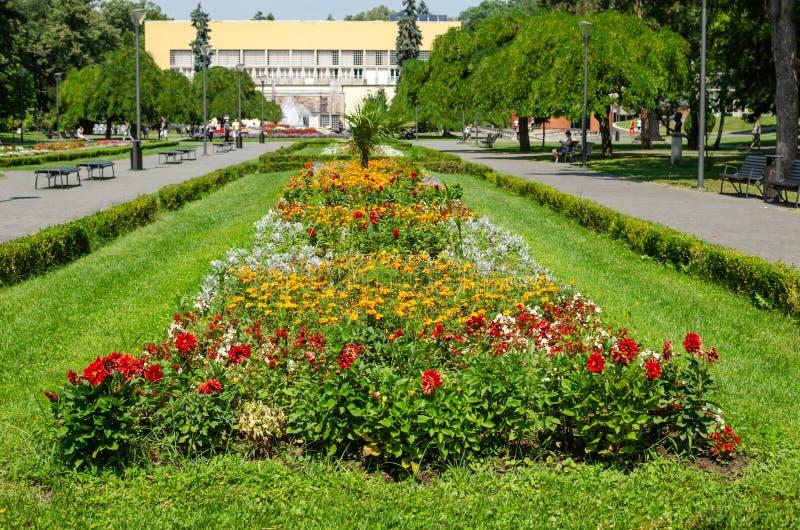 Parque público - Vrnjacka Banja, Serbia imágenes de archivo libres de regalías
