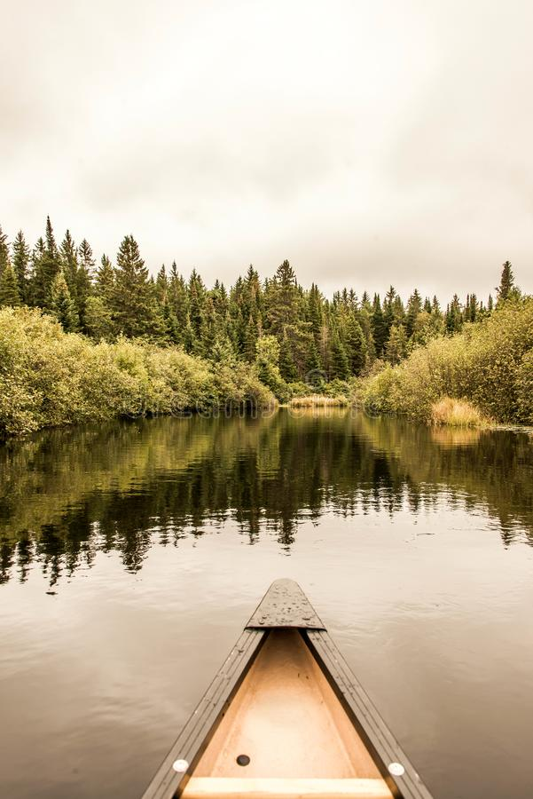 Parque pacífico del Algonquin del lago calm de la nariz de la canoa muy, línea de Forest Shore del árbol de pino de la línea de l fotos de archivo