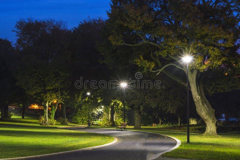 Parque pacífico en la noche con las luces de calle, los árboles, la hierba verde y el camino foto de archivo libre de regalías