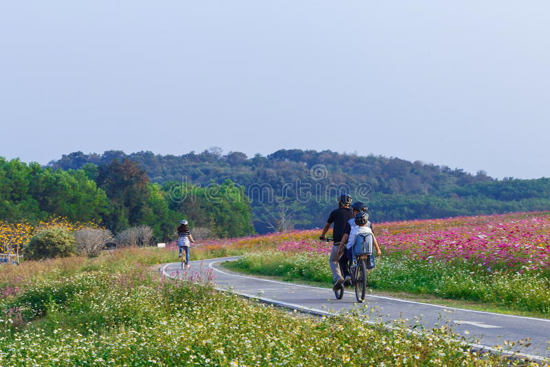 Parque, parque Chiang Rai de Singha, Chiang Rai, Tailândia foto de stock