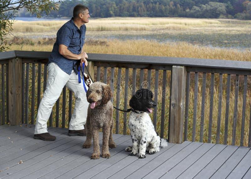 Parque provincial de Presqu'ile, o Lago Ontário imagem de stock royalty free