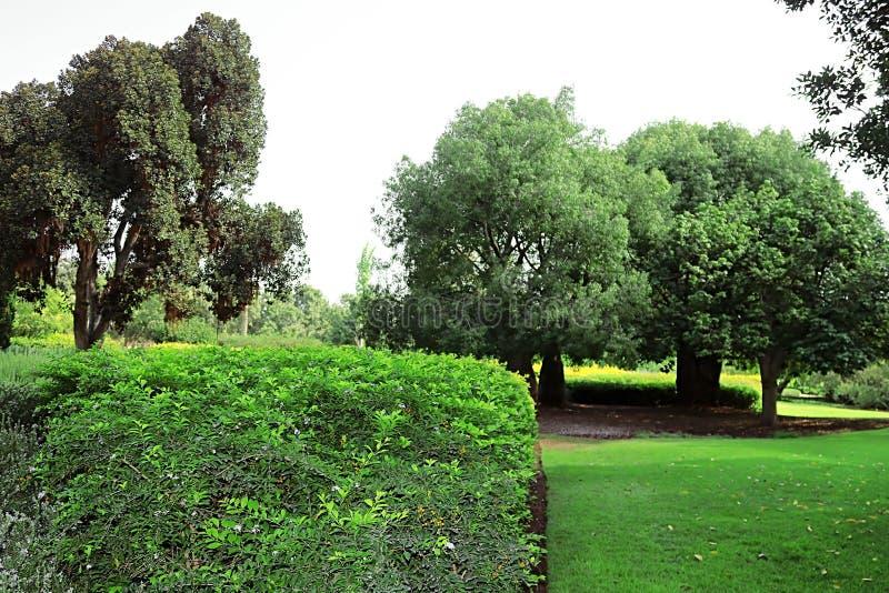 Parque Ramat Hanadiv, jardins memoráveis de Baron Edmond de Rothschild, Zichron Yaakov, Israel imagens de stock royalty free