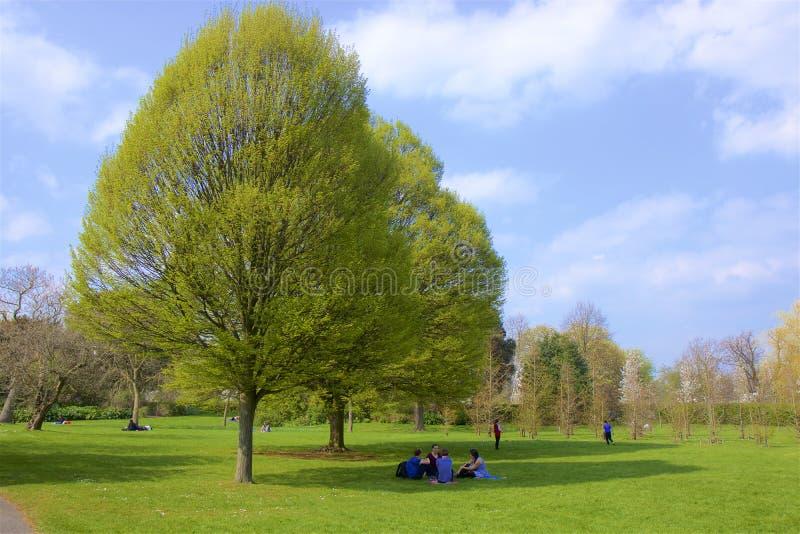 Parque regente del ` s, Londres, Inglaterra fotos de archivo libres de regalías