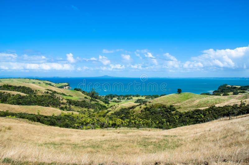 Parque regional de Shakespear, região de Auckland, Nova Zelândia fotos de stock royalty free