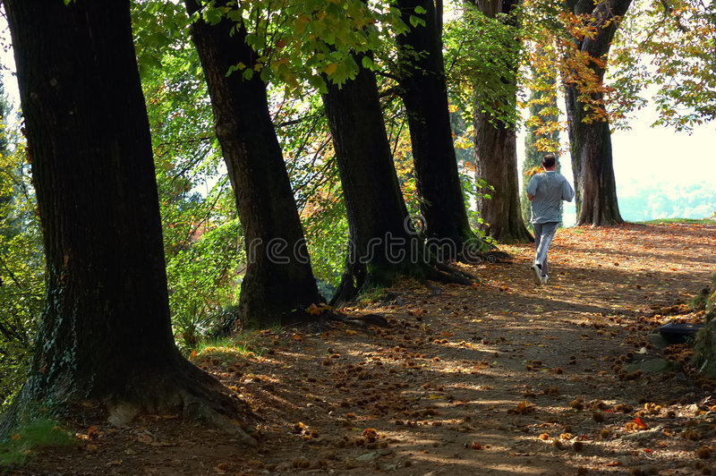 Parque running do homem fotografia de stock royalty free