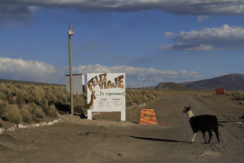 Parque Sajama nacional Bolivia fotos de archivo libres de regalías