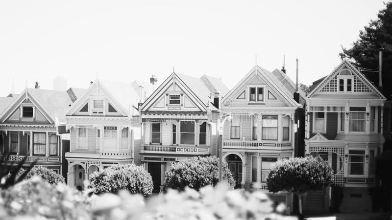 Parque San Francisco de Álamo foto de archivo libre de regalías