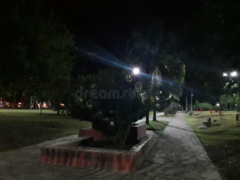 Parque San MartÃn Jujuy Argentina fotos de stock