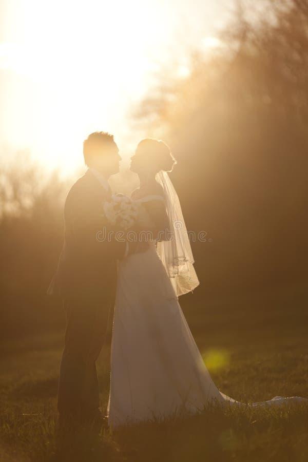Parque silhouettesevening de beijo da mulher da terra arrendada do homem fotos de stock