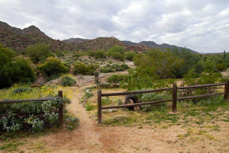 Parque sul da montanha, Phoenix, o Arizona foto de stock