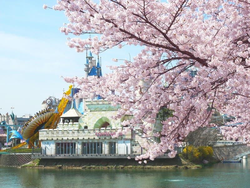 Parque tem?tico do divertimento de Lotte World imagem de stock