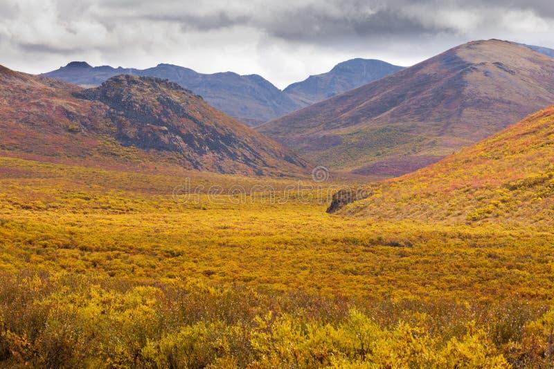 Parque territorial el Yukón Canadá de la piedra sepulcral del color de la caída fotos de archivo