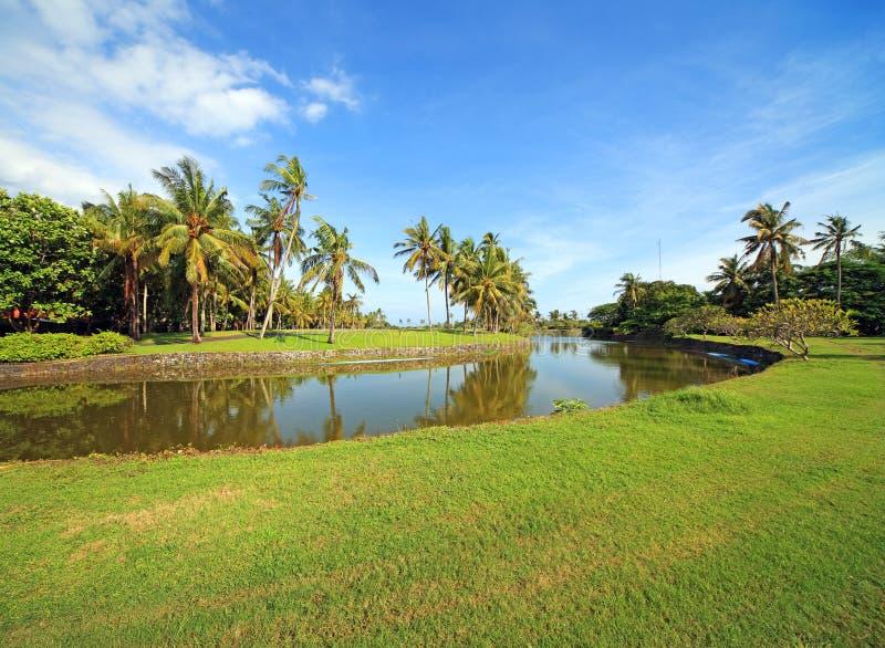 Parque tropical do Balinese com golfe. imagem de stock royalty free