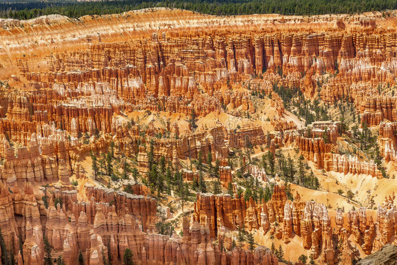 Parque Utá de Bryce Point Bryce Canyon National da inspiração do anfiteatro imagem de stock