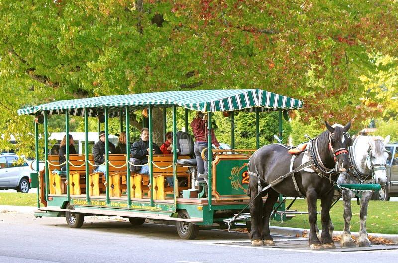 Parque Vancôver de Stanley foto de stock royalty free