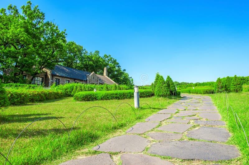 Parque verde com caminho de pedra imagem de stock