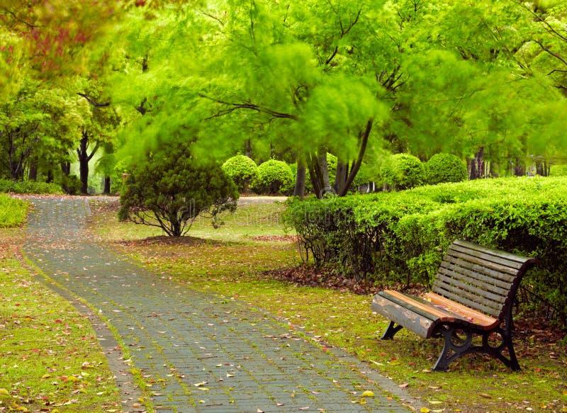Parque verde da cidade. Shanghai, China fotografia de stock