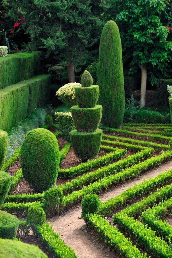 Parque verde decorativo - jardín botánico Funchal, foto de archivo
