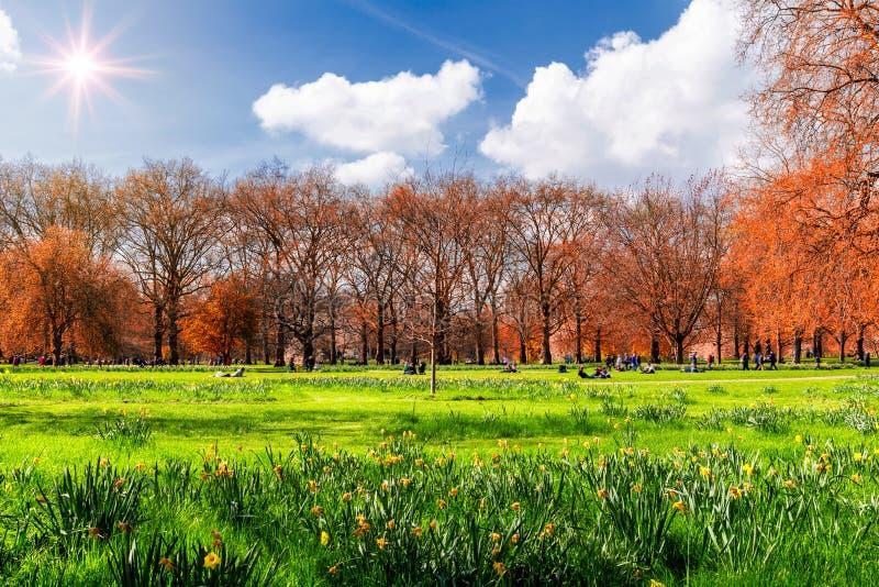 Parque verde en Londres durante día de primavera caliente Gente que se sienta en t fotografía de archivo libre de regalías