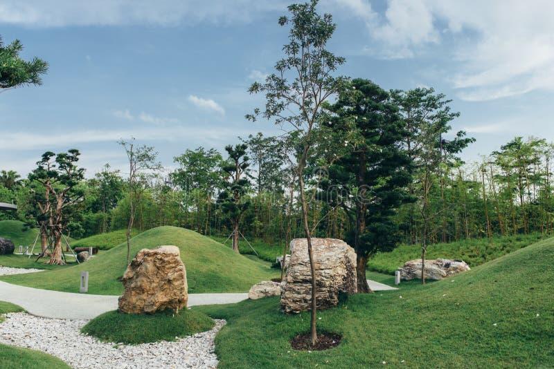 Parque verde público, diseño del paisaje, hermosa vista del jardín ajardinado foto de archivo libre de regalías