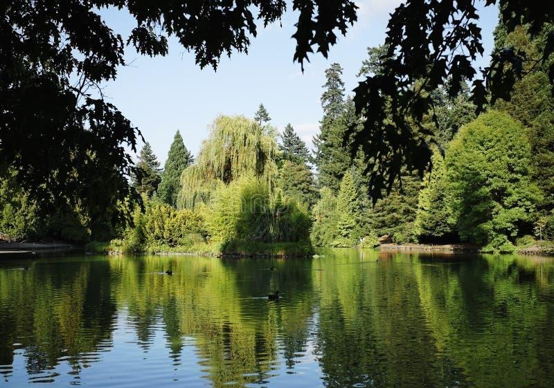 Parque XI de la ciudad imagen de archivo