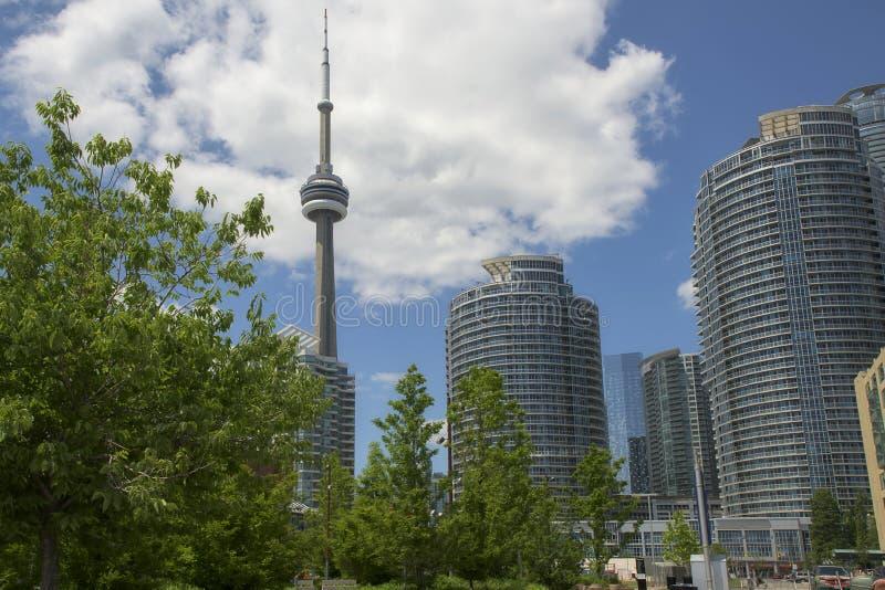Parque y edificios de la torre del NC de Toronto fotografía de archivo libre de regalías