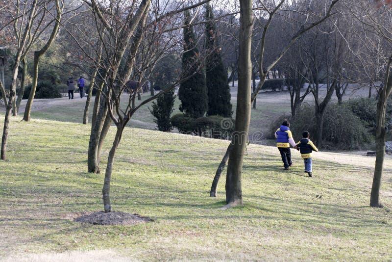 Parque y niños fotografía de archivo