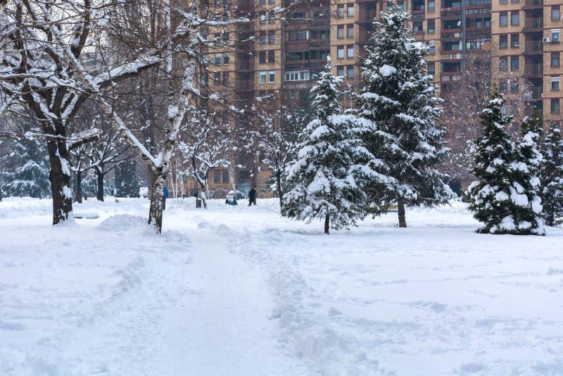 Parque y sendero de la ciudad cubiertos con nieve grande fotos de archivo