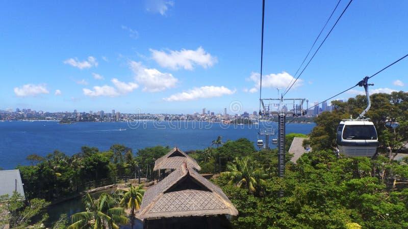 Parque zoológico de Tarongo imagen de archivo libre de regalías