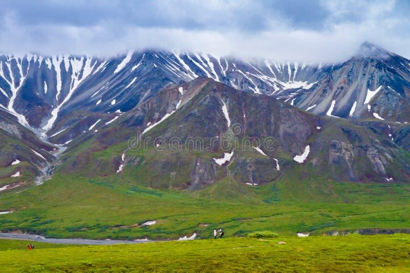 Parques nacionais de Alaska fotografia de stock