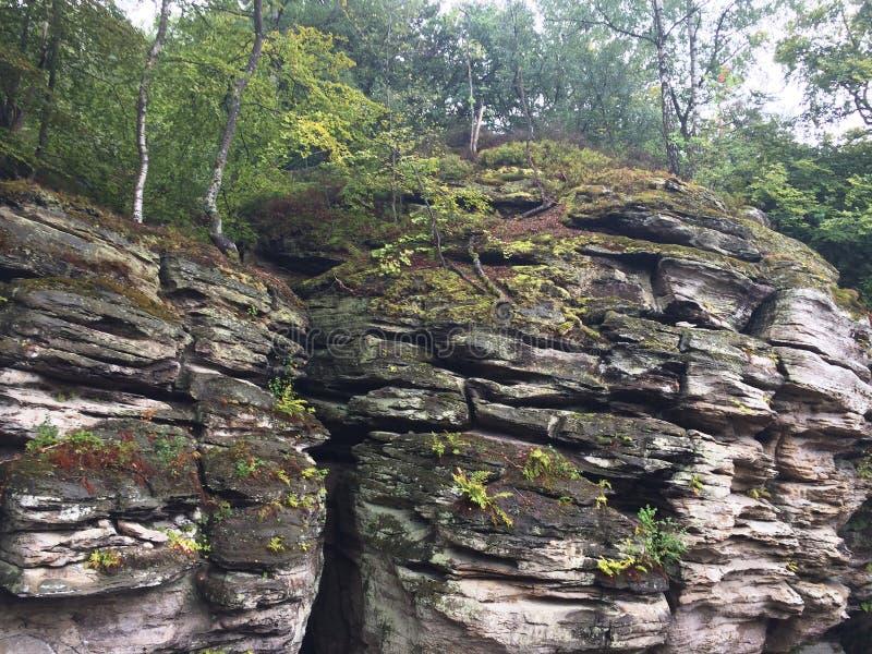 Parques nacionais de Luxemburgo Paisagem da montanha Formações de rocha expostas com a fenda profunda coberta com a vegetação out imagem de stock royalty free