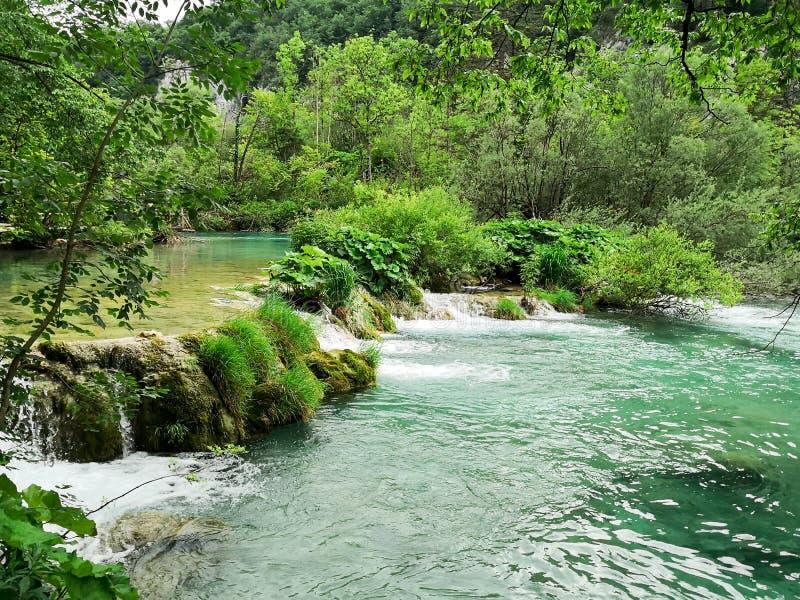 Parques naturais de Plitvice fotografia de stock royalty free