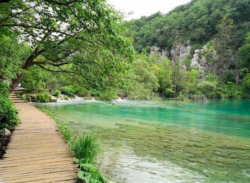 Parques naturais de Plitvice fotos de stock