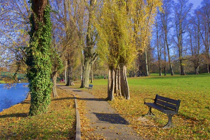 Parques no outono, Inglaterra de Londres fotos de stock royalty free