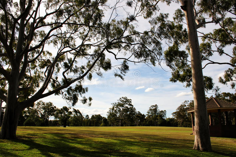 Parramatta Park @ Sydney. Parramatta Park is a stunning 85 hectare national heritage listed park located on the western edge of the Parramatta CBD. It is a must stock images