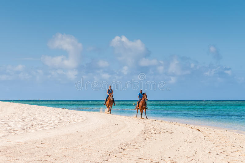 Parridning på hästrygg längs havet arkivfoton