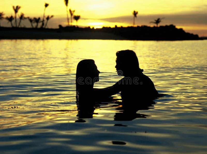 parromantiker fotografering för bildbyråer