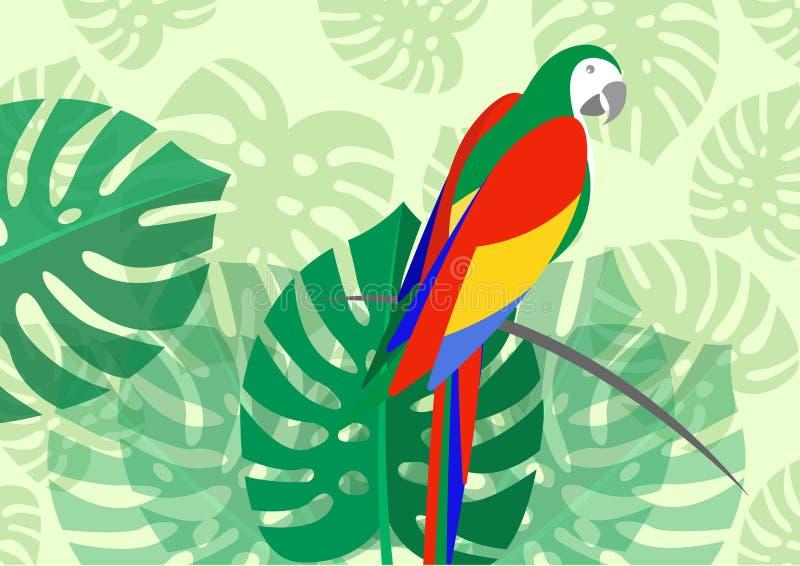 Parrot лист зеленого цвета картины лета тропического whit значка птицы флористические тропической предпосылки monstera цветка бесплатная иллюстрация