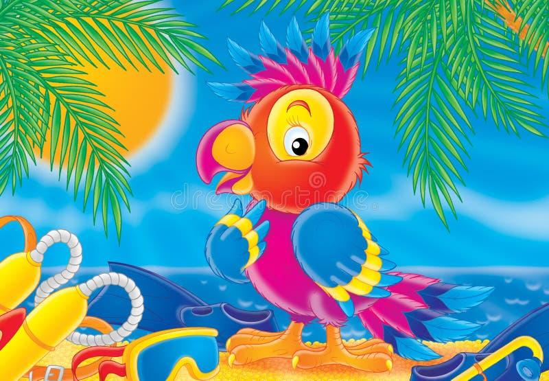 Parrot 004 royalty free illustration