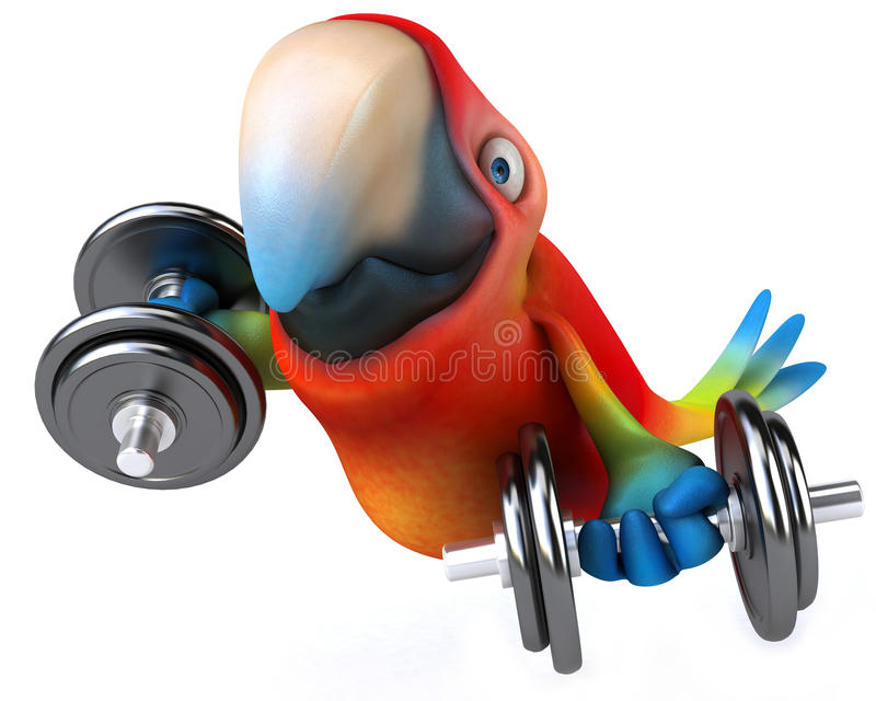 Download Parrot stock illustration. Image of bird, perch, portrait - 29459623