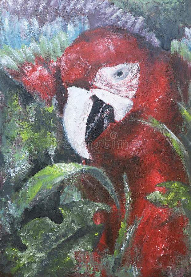 Parrot acrylic painting royalty free stock images