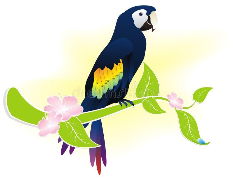 Download Parrot Ara Royalty Free Stock Photos - Image: 23369538
