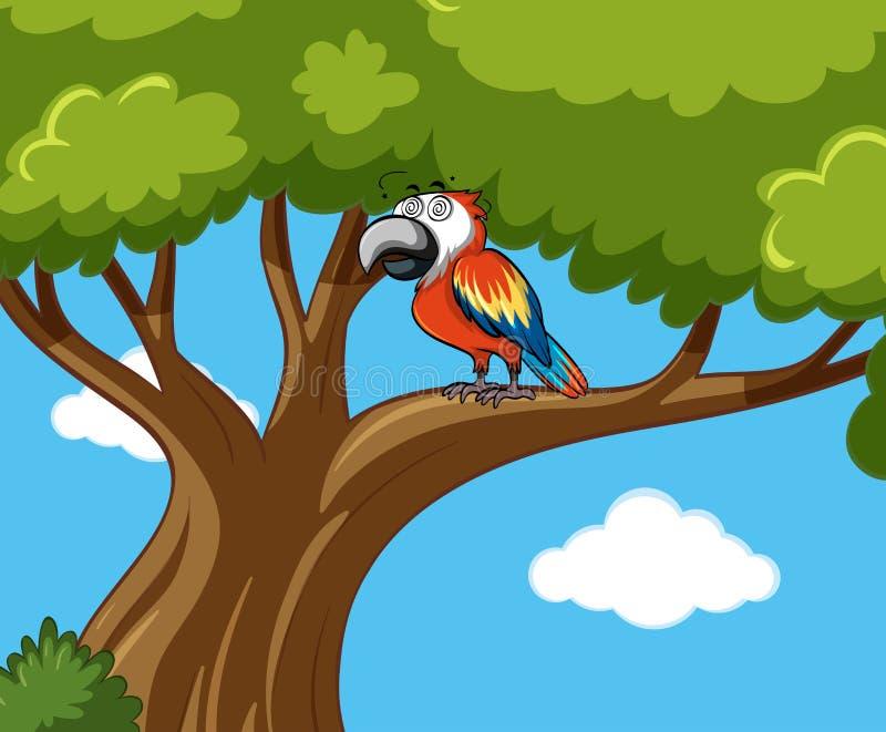 Parrot bird on the branch. Illustration stock illustration