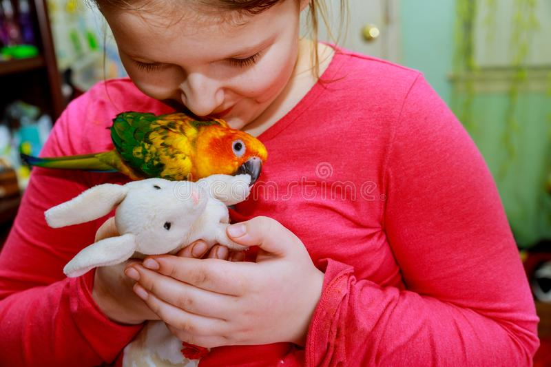Parrot bird on young girl hand Environment human and nature concept Smiling playing with her bird pet. stock photo