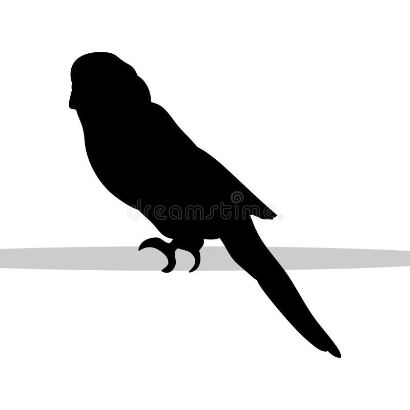 Parrot budgerigar bird black silhouette animal. Vector Illustrator.r vector illustration
