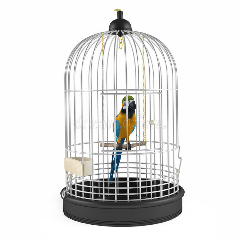 Free Parrot Cage Isolated Royalty Free Stock Images - 40961139