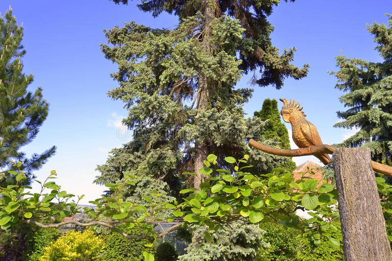 Parrot carved for wood in the garden. Parrot carved from wood on tree in summer day in garden royalty free stock photos