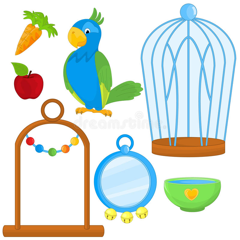 Parrot With Different Toys And Accessories stock illustration