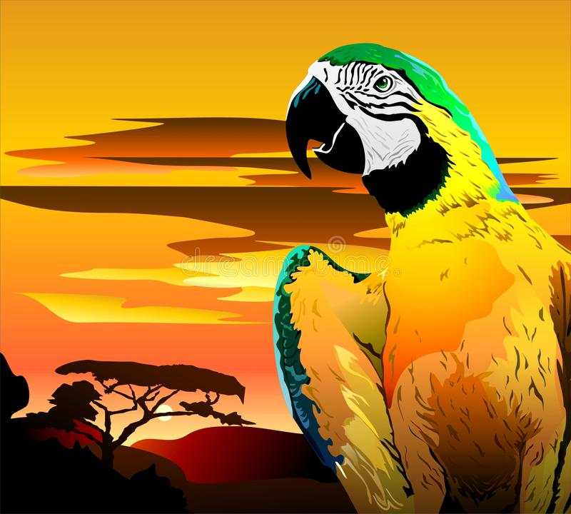 Free Parrot In Bright Colors. Vector Stock Photos - 131390293